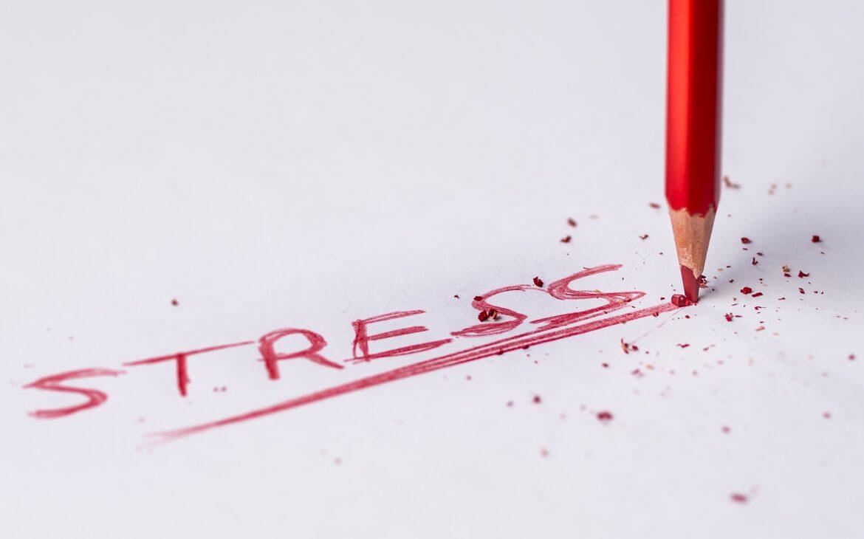Dnešní doba po nás žádá zaučit se co nejrychleji, což je pro nás mnohdy stresující.