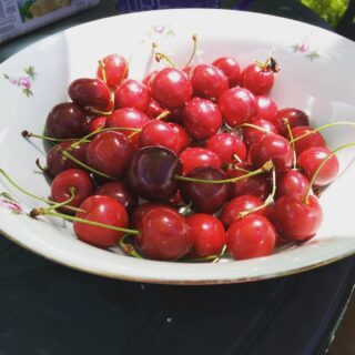 Letní vzpomínky 🍒#memories #summerlover #summervibes #cherry #cherrylovers #cherries🍒 #fruits #fruitslover #addicted #fruitbasket #čerešne #gardentime #gardenidylka #idylkanavesnici #navejminku #karlovarskykraj #PoCesku #PoBocsku #bocanda